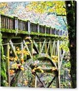 Latourel Creek Bridge Acrylic Print