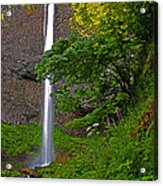 Latourell Falls Oregon - Posterized Acrylic Print