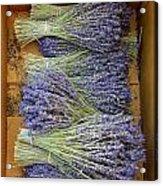 Lavender Bundles Acrylic Print