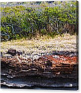 Layers And Textures Acrylic Print