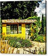 Le Jardin De Vincent Acrylic Print by Chris Thaxter