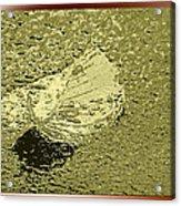 Leaf Mytallique Acrylic Print