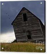 Leaning A Little 2 Acrylic Print