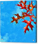 Leaves Against The Sky Acrylic Print