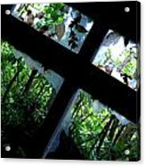 Leaves And Broken Glass Acrylic Print