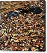 Leaves Floating On River Water Acrylic Print