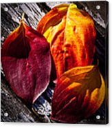 Leaves On The Deck Acrylic Print