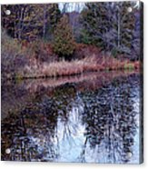 Leaves On Water Acrylic Print