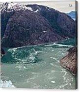Leconte Glacier Acrylic Print by Mike Reid
