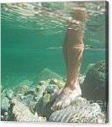 Legs Underwater Acrylic Print