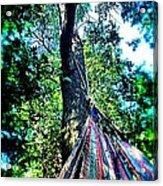 Leisure Acrylic Print