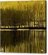 Lemon Lake Acrylic Print
