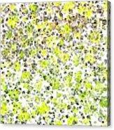 Lemon Lime Abstract Acrylic Print