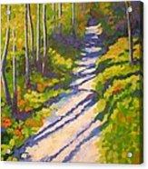 Lena Lake Trail 3 Acrylic Print