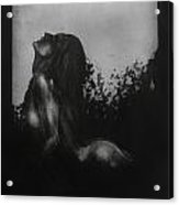 Liberation Acrylic Print by Darko Mitrevski