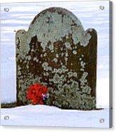 Lichen Tombstone Acrylic Print