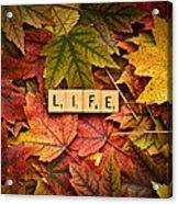 Life-autumn Acrylic Print