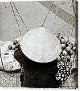 Life In Hue Acrylic Print