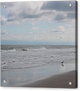 Lifes A Beach Acrylic Print by Suzanne Gaff