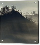 Light In Mountain Fog Acrylic Print