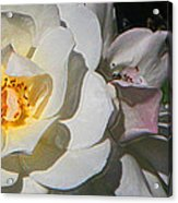 Light The Way Acrylic Print