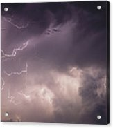 Lightning Flashes Over A Stand Of Trees Acrylic Print