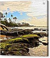 Lihue Rocky Coast Acrylic Print