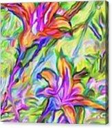Lilies Transformed Acrylic Print