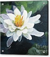 Lily In Water 2 Acrylic Print