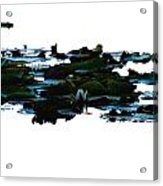 Lily Pads On White Water Acrylic Print