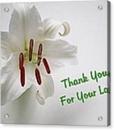 Lily Thank You 2 Acrylic Print