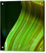 Lime Curl Ll Acrylic Print by Dana Kern
