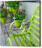 Lime Green Acrylic Print by Cindy Wright