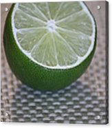 Lime Light Acrylic Print by Terri Thompson