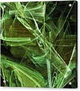 Lime Acrylic Print