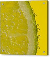 Lime Slice Soda 2 Acrylic Print