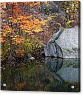 Lincoln Woods Autumn Boulders Acrylic Print