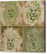 Lion X 4 One Acrylic Print