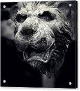 Lions Head 2 Acrylic Print
