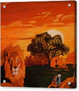 Lions Love Life Acrylic Print