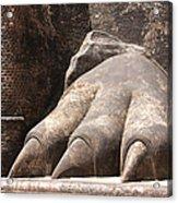 Lion's Paw Sigiriya Acrylic Print