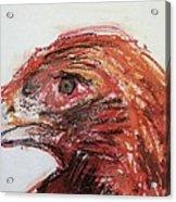 Lipstick Eagle Acrylic Print by Iris Gill