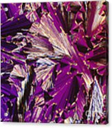 Liquid Crystalline Dna Acrylic Print