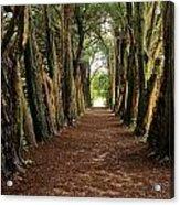 Lismore, County Waterford, Ireland Acrylic Print
