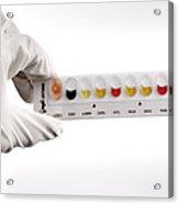 Listeria Indentification Acrylic Print