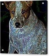 Little Blue Acrylic Print