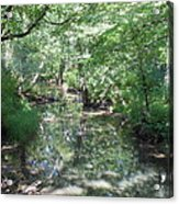 Little Creek Reflections Acrylic Print