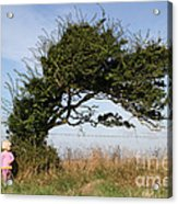 Little Girl And Wind-blown Tree Acrylic Print