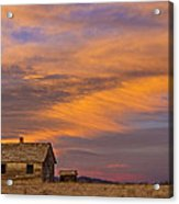 Little House On The Colorado Prairie 2 Acrylic Print by James BO  Insogna