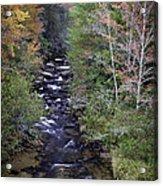 Little River - North Carolina Autumn Scene Acrylic Print
